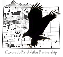 Colorado Bird Atlas Partnership
